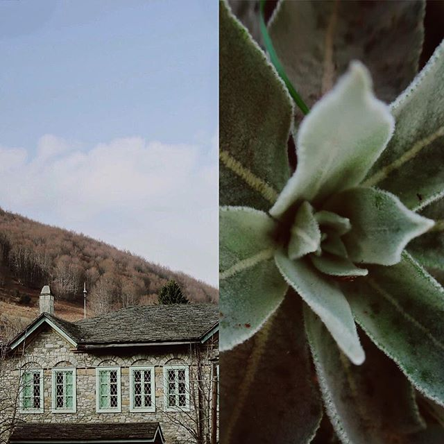 The village where everything is color matching 😁 #nimfaio  ______________________________________ #greece #nimfaio #travel #holidays #mint #pantone #green #colormatching #easter #nature #diptych #doublestories