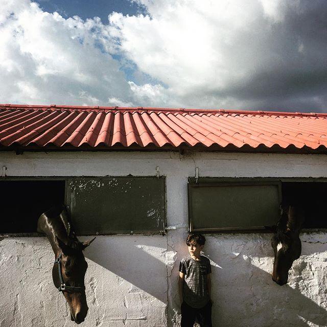 #a_childhööd_journal  Building friendships or just being curious 🤷🏼♂️ _____________________________________ #riding #horse #kidsandhorses #childhood #childhoodunplugged  #a_childhööd_journal #horselove #kidsgrowuptoofast
