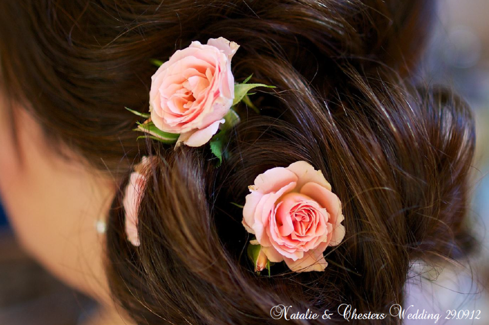 Fresh coral rose hair adornment