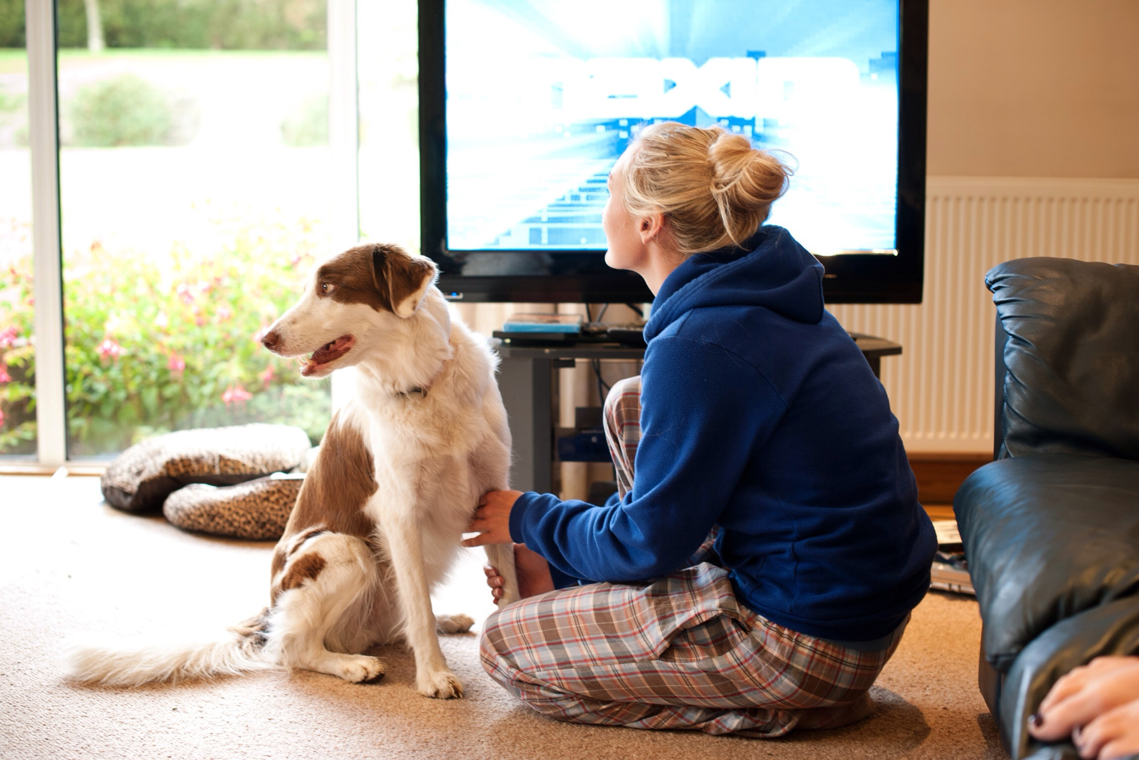 The lovely bride chilling with her dogs and watching movies in her jimjams..I love the honesty of this photo so much.