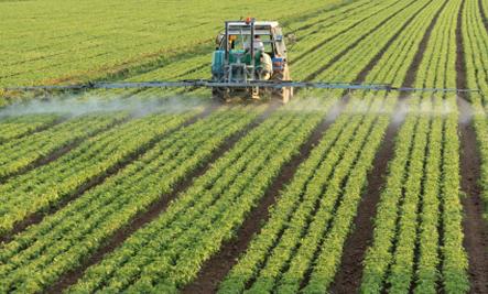 pesticide-spray-resized.jpg