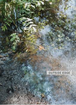 OUTSIDE EDGE, 2016
