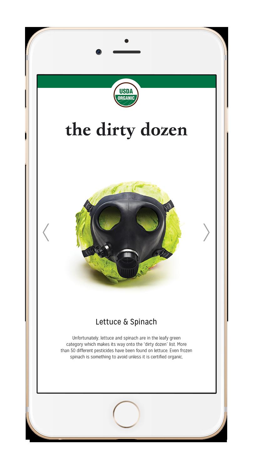 Ditry-Dozen-App.png