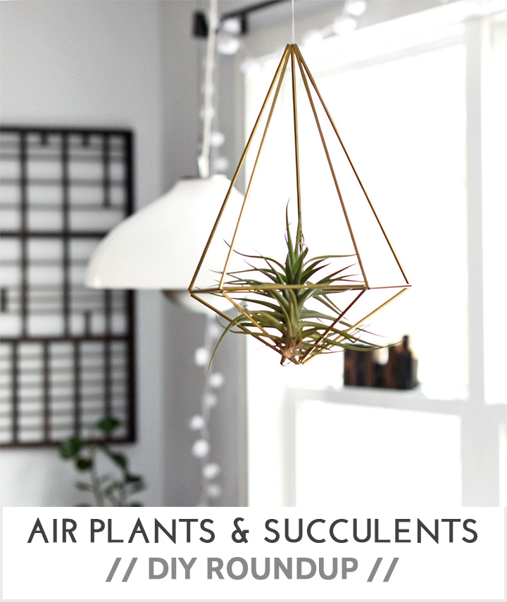 Air Plants & Succulents DIY Roundup \\ Very Shannon  - Brass Prism from HRUSKAAA