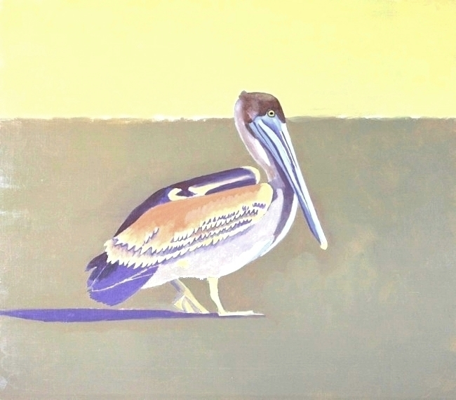Brown Pelican painting (base coat) by William R. Beebe