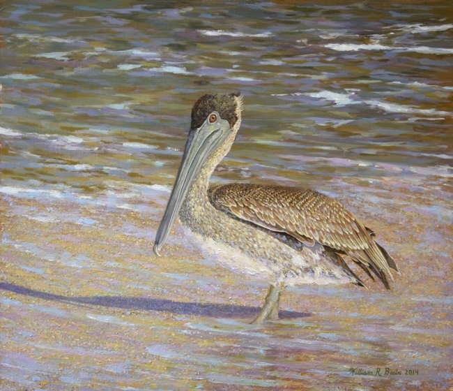 Pelican's Solitary Respite , 12 x 14, oil on board, $2300