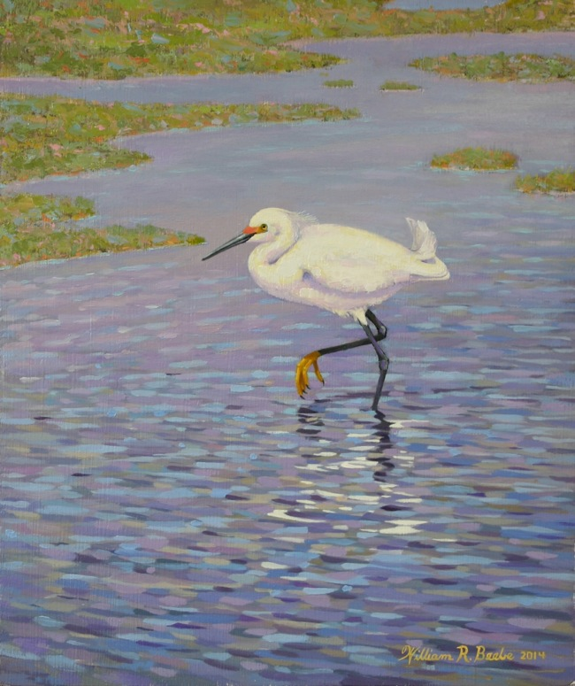 Snowy Egret Slow Walking  by William R. Beebe, 10 x 12, oil on board, $950