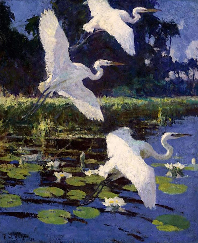 Herons and Lilies, 1862 by Frank W. Benson