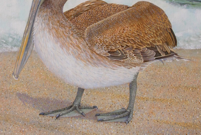 Taking a Stance by William R. Beebe (detail shot)