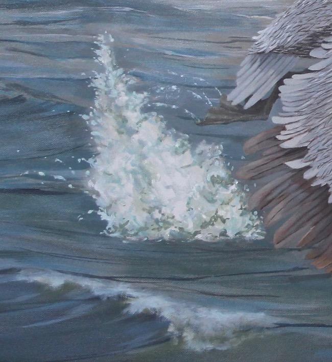Pelican Power   by William R. Beebe, splash detail