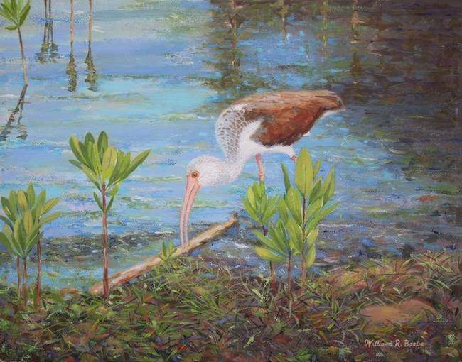 In the Shallows    by William R. Beebe, 11 x14, Oil on canvas, $1800