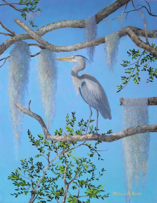 Lowcountry Heron    by William R. Beebe, 14 x 11, Oil on Canvas, $1800
