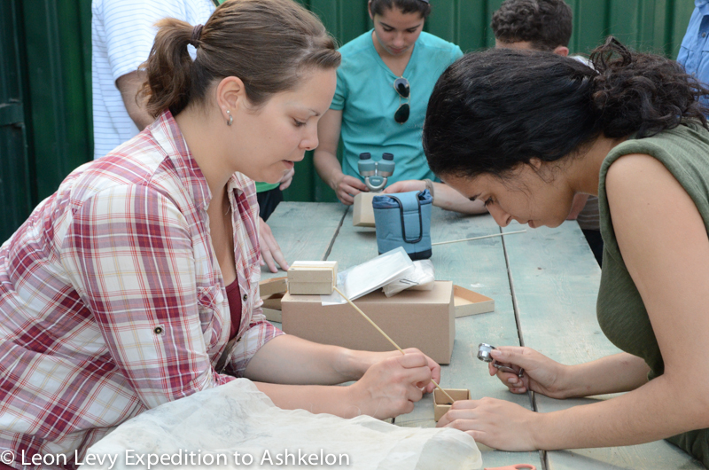 A volunteer attends an archaeobotany session