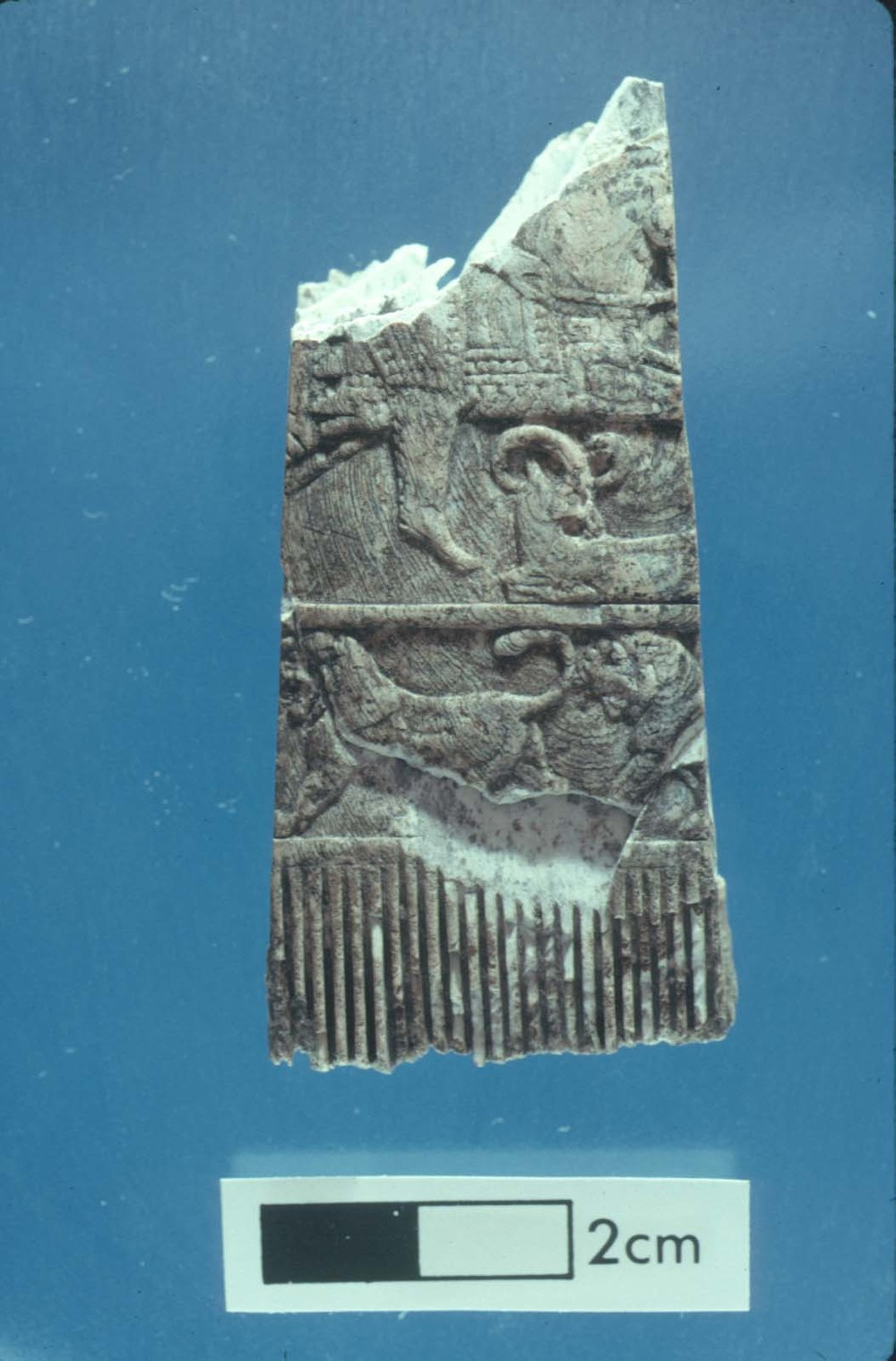 Ivory comb depicting a hunter on horseback.