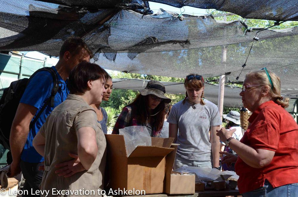Zooarchaeology Seminar