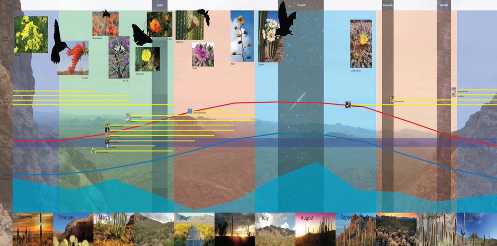 This image demonstrates how students are able to connect scientific information with perception.  Due to the power of photography databases, students can find perceptual images showing how the scientific information appears in their landscapes.  The Sonoran Desert is interesting as a challenge to preconceptions as it is a five season landscape, noticeable through these images. (click to enlarge)