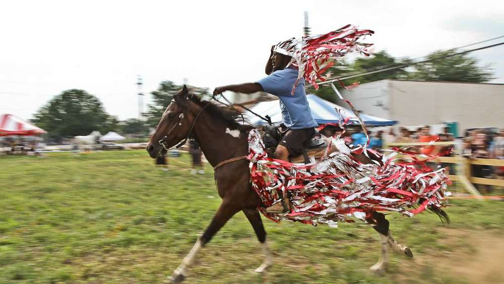 horses_20140715_2010616484.jpg