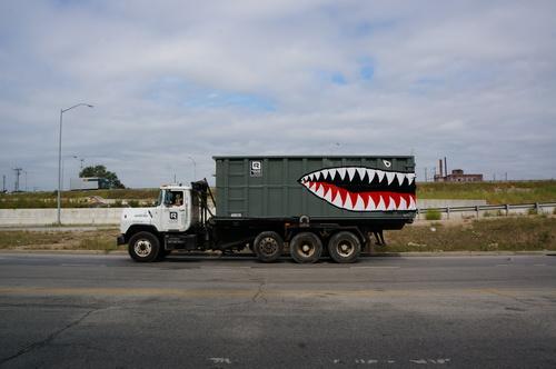 Shark1.jpeg