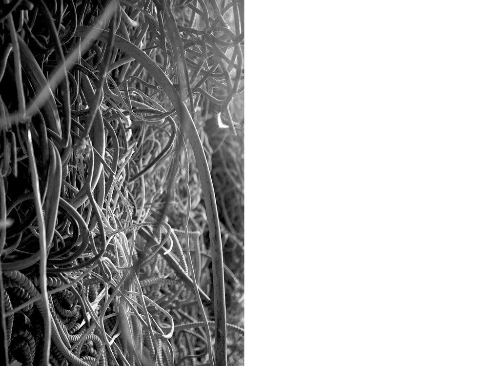 phila freedoms8.jpg