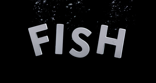 FISH USA Networks main titles