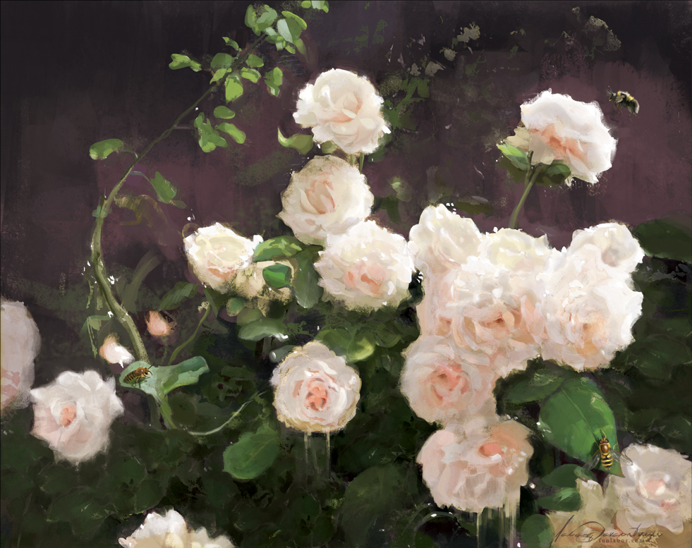 White Roses by Jeremy Deveraturda