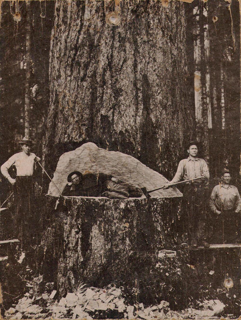 Lumberjacks2-1500px.jpg