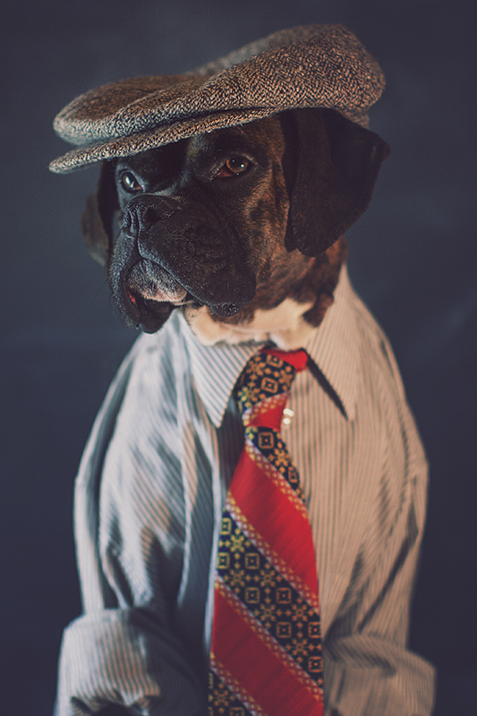 This is my official business portrait. They told me to dress business formal, but then I was like...I'm a pooch, so I'll just stick with caszh. I kinda like it, I feel like one of the newsies! After all, I am the blogger, guru guy.