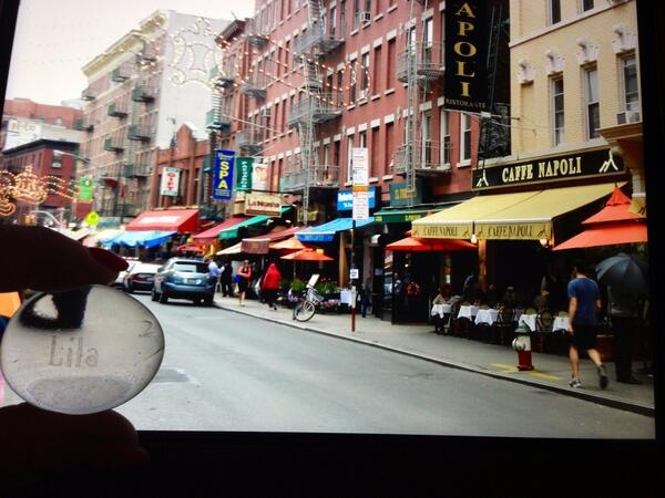 Lila in Little Italy in NYC