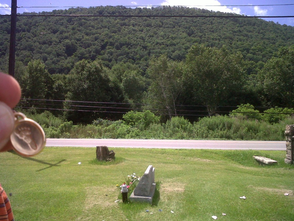 Lila overlooking a mountain in Renovo
