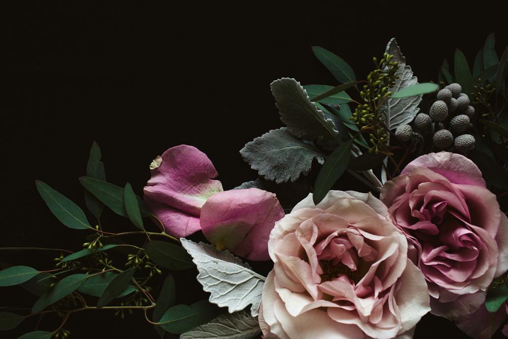 flowerstillsdec13-4.jpg
