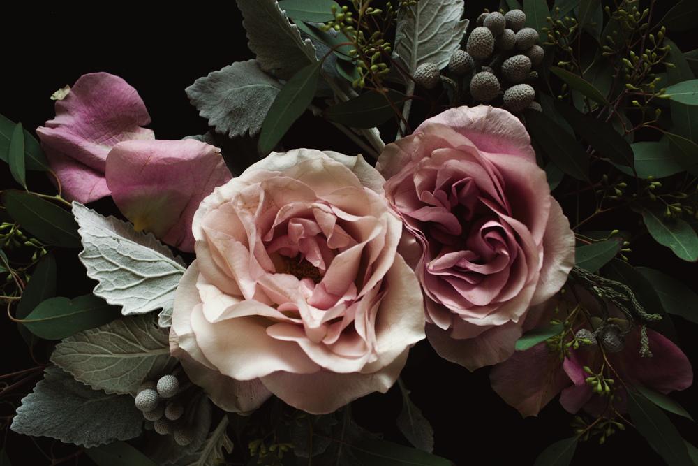 flowerstillsdec13-5.jpg