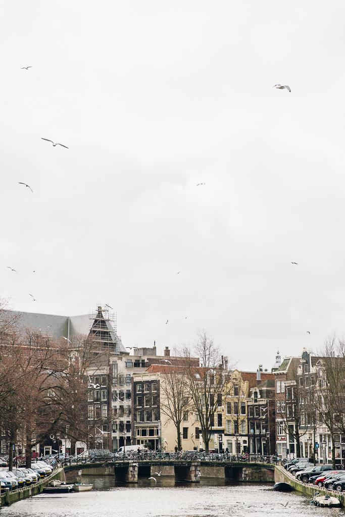 201503_Amsterdam-46.jpg