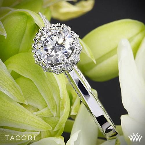 18k White Gold Tacori Sculpted Crescent Harmony Solitaire Engagement  ~   How To Select The Perfect Diamond Engagement Ring - Style Estate -