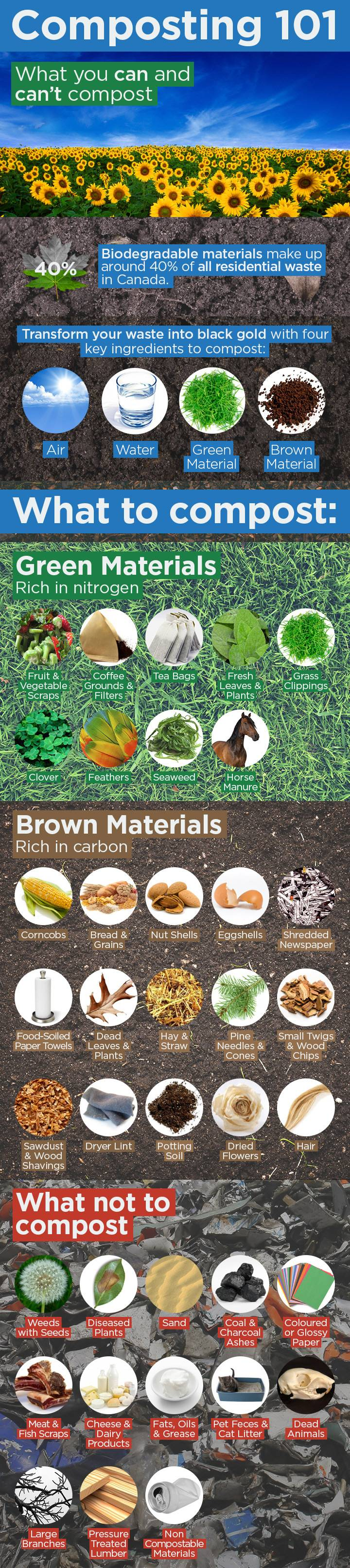 *infograpic by Global Newshttp://globalnews.ca/news/1771011/countertop-composting-catches-on-with-apartment-dwellers/