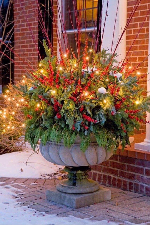 Winter Container Garden Ideas