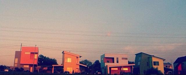 Agave-Austin_Texas.JPG