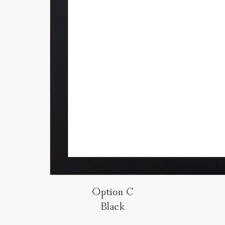 Option C Corner.jpg