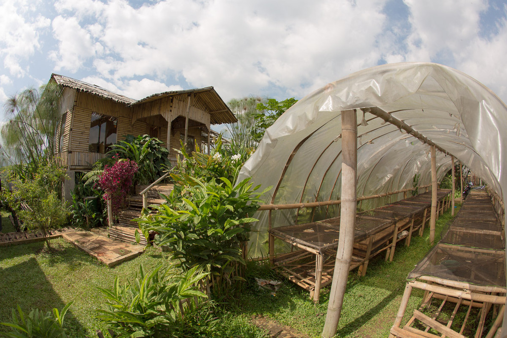 Coffee Base Camp, Farmer Buying Station and Coffee Drying Facility, Panawuan Village