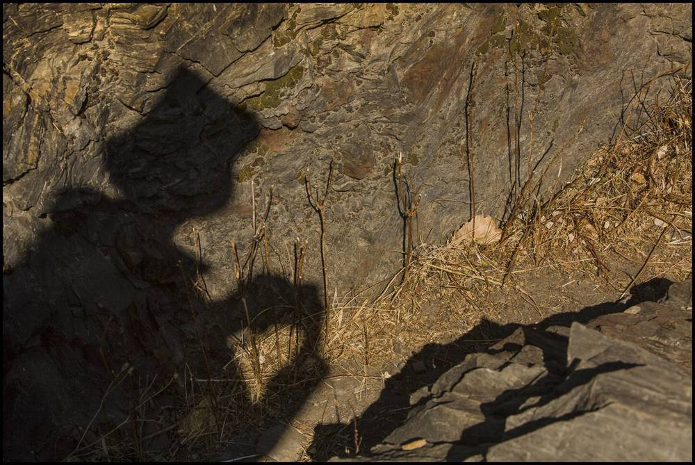 In a narrow canyon, a shadow outlines a herder who collects native seeds that will help revegetate part of his family land.