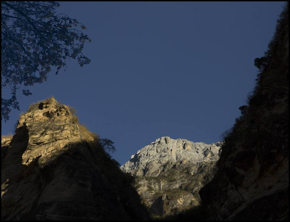 In a canyon shadow, a fruit tree provides shade, food, and nitrogen for a nearby family.