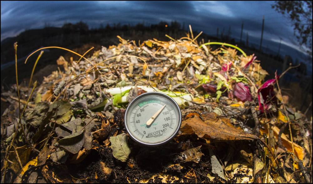 Our good hot compost, the most imporant tool in our food-growing strategies, is endagered by the current version of the Food Safety Modernization Act.