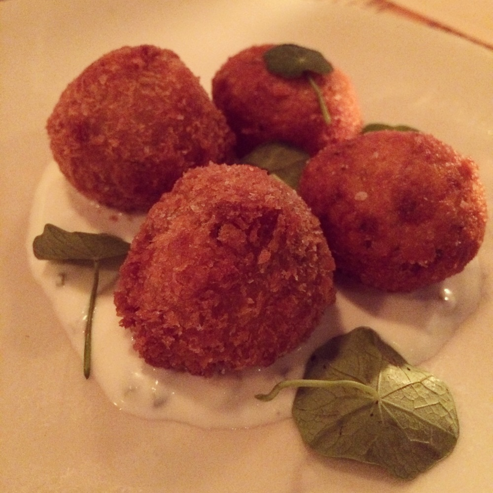SALT COD & POTATO FRITTERS: chive sour cream