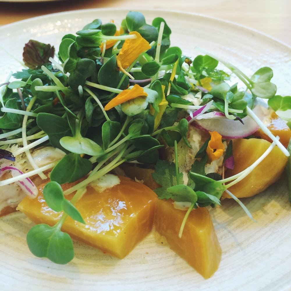 Beet Salad - Roka Akor