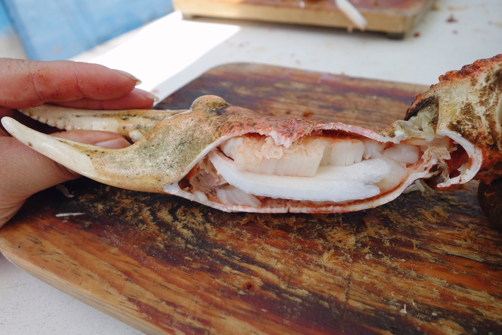 Guide to Seafood in Popotla Mexico | Bites & Bourbon