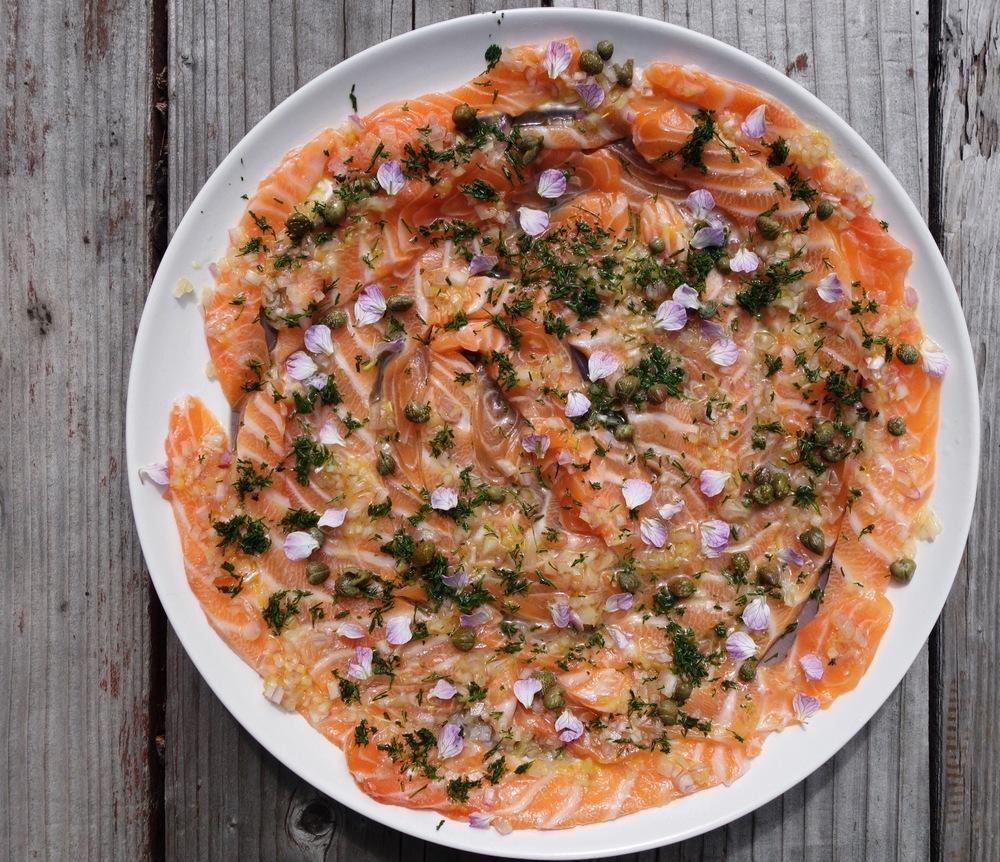 Salmon Crudo Recipe