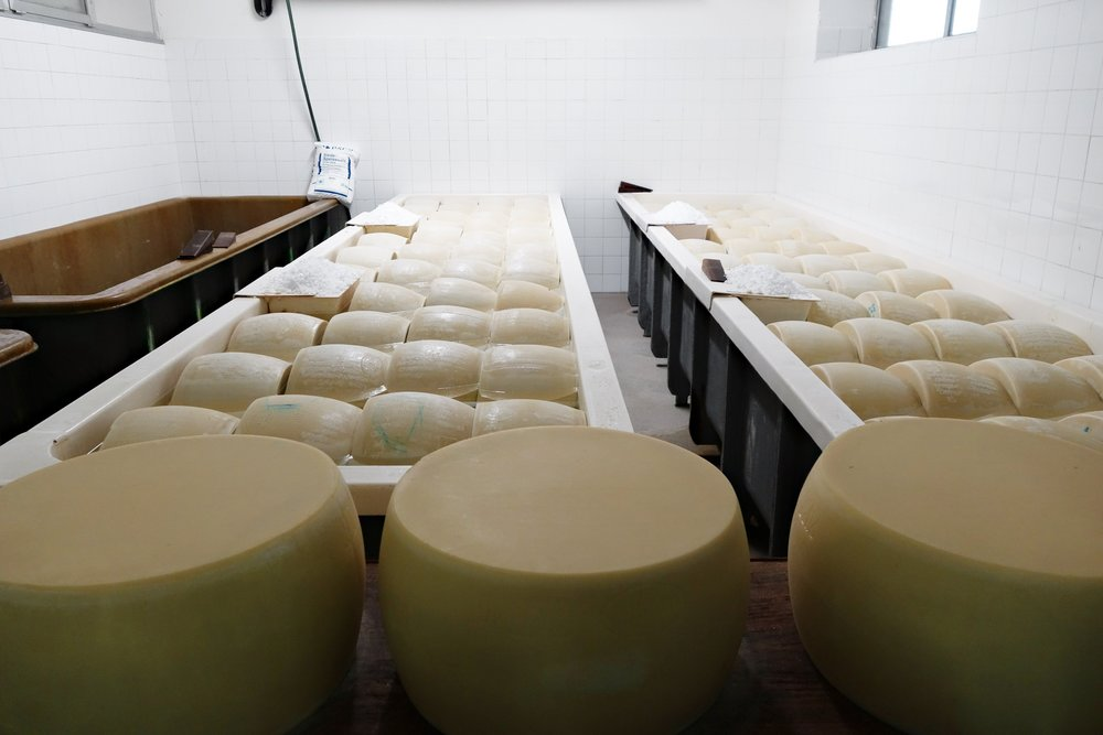 After few days, the Parmigiano Reggiano wheels are immersed in a water and salt-saturated solution. It is a process of salting by absorption which, within less than a month, closes the production cycle and opens the cycle of maturation.
