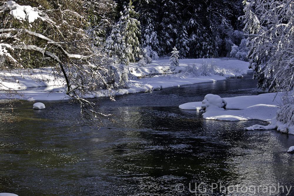 Yosemite 086.jpg