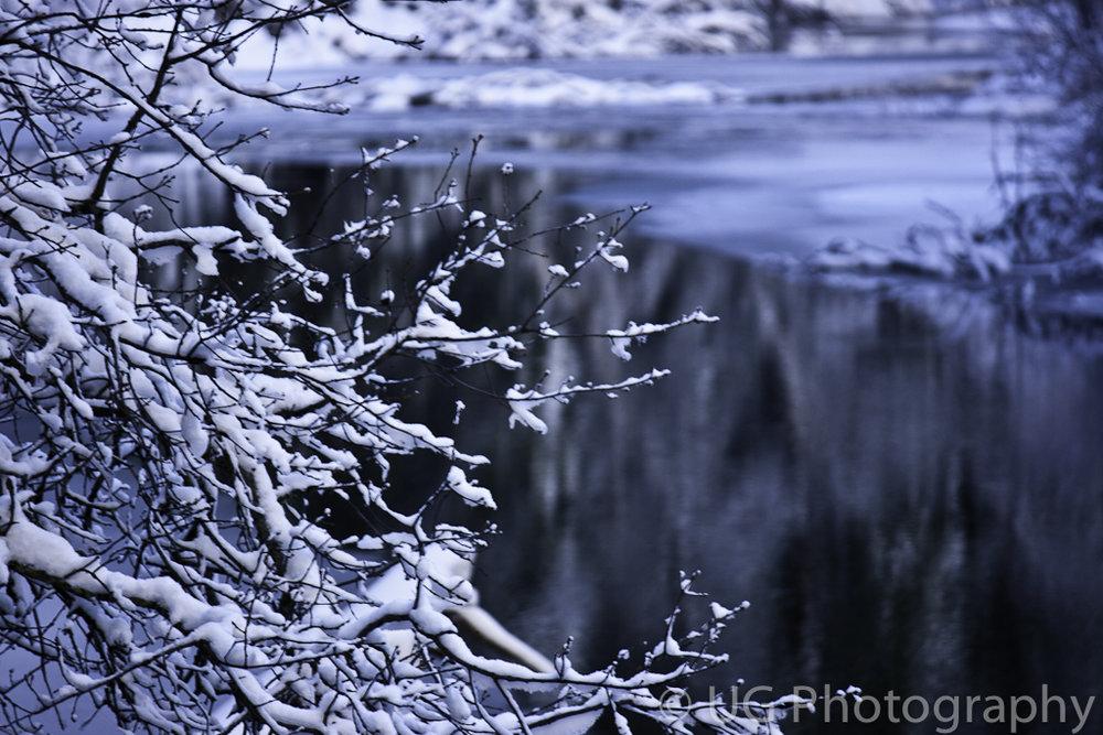 Yosemite 163.jpg