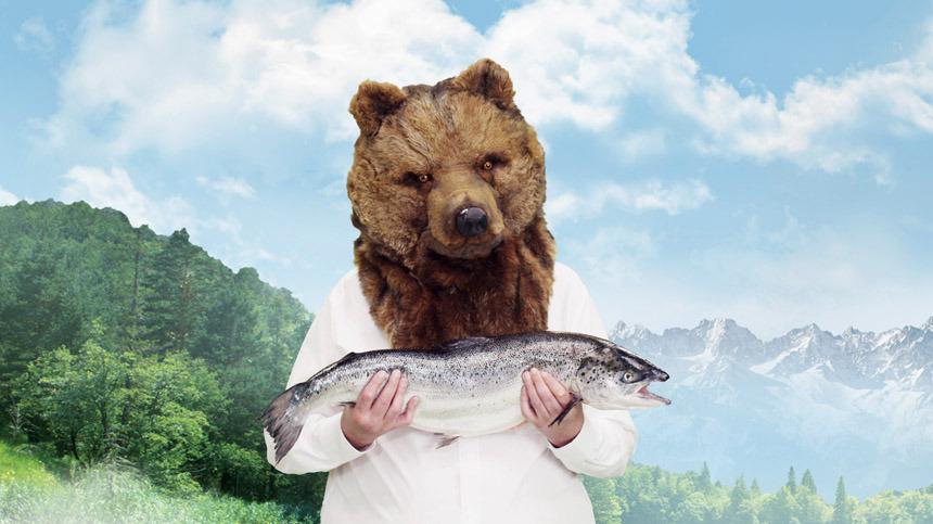 bergaus_bear1_860.jpg