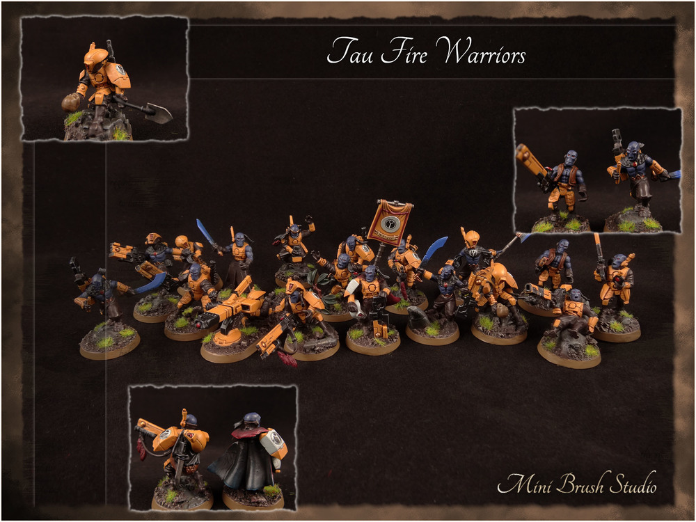 Fire Warrior Team 6 ( Converted ) v7.00.jpg